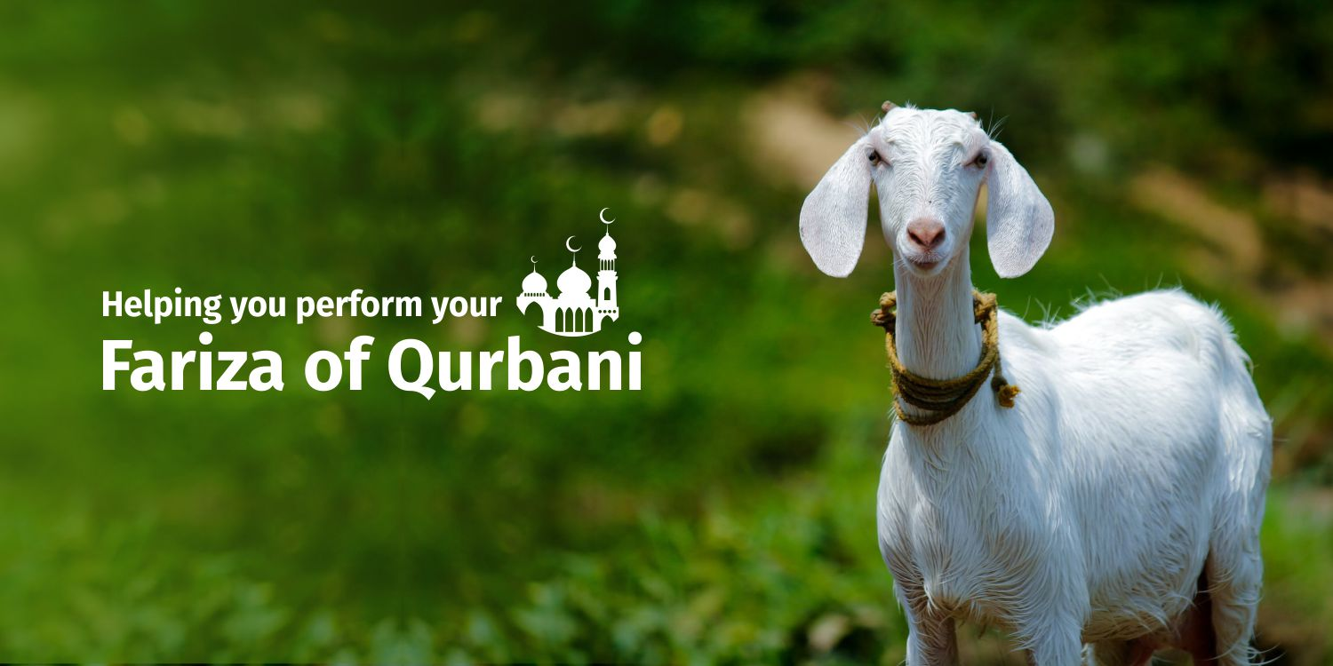 Qurbani and its relevance